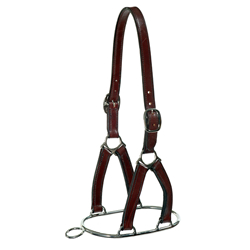 Stephens Controller Headcollar - 1in