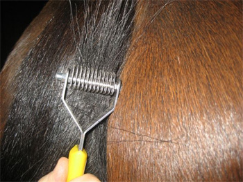 Smart Grooming Smart Tails Thinning Comb