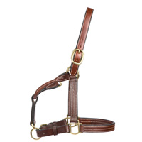 Weaver Halter with cheek clip, 2-yrs and yearling