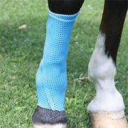 gel-bandage-for-horses-leg_med