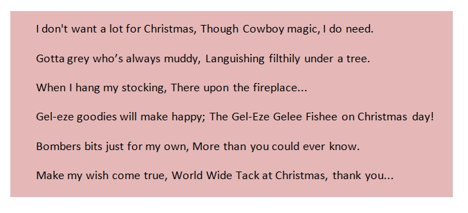 I Dont Want A Lot For Christmas.Equestrian Gifts For Your Horse This Christmas Worldwide